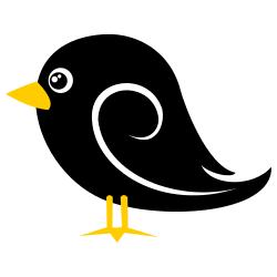 BirdBlack