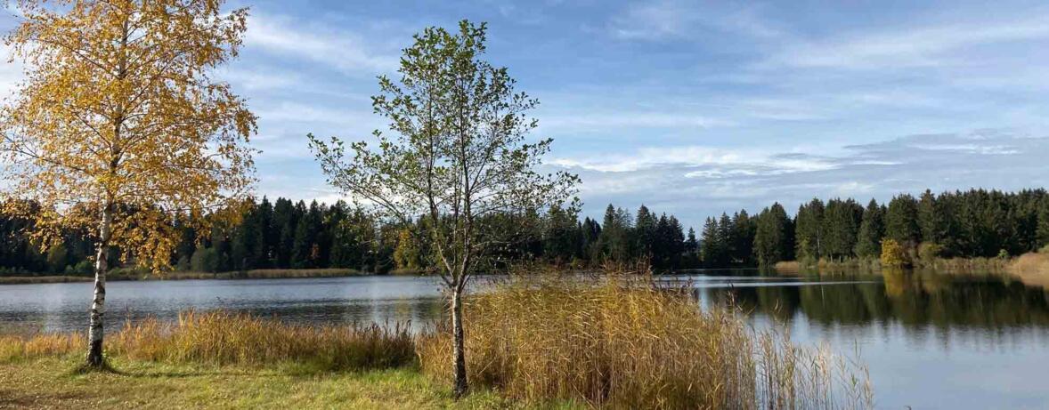 Hegratsrieder See bei Schwangau_Foto Karl-Georg Michel_web-schmal