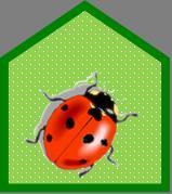 Marienkäfersymbol