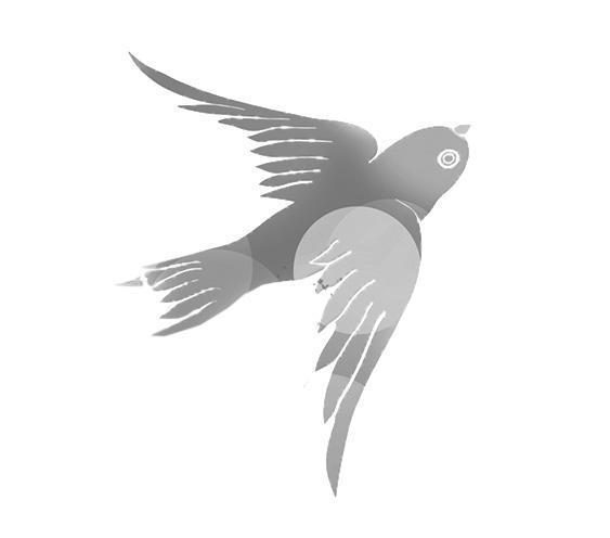 PGR-Wahl 2014 Vogel grau1