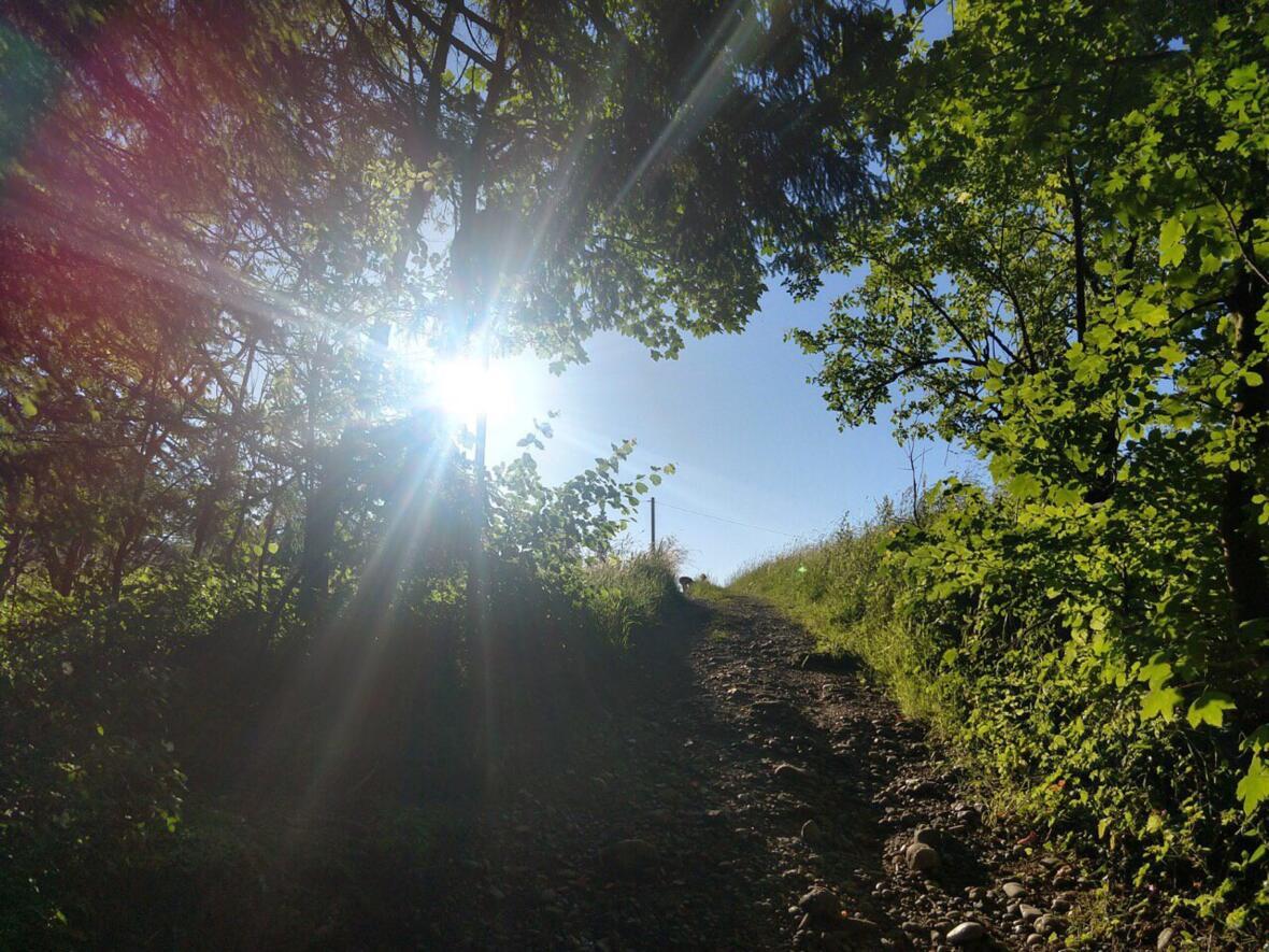 GI_KW 14 In einem anderen Licht Bild