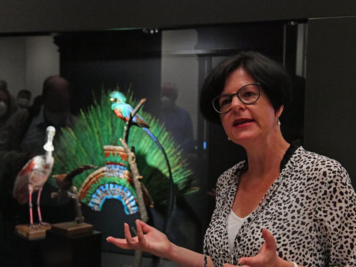 Museumsleiterin Melanie Thierbach führt durch die Ausstellung. Im Hintergrund die Nachbildung eines Federschmucks, wie er wohl von aztekischen Priestern getragen wurde (Foto: Julian Schmidt / pba)