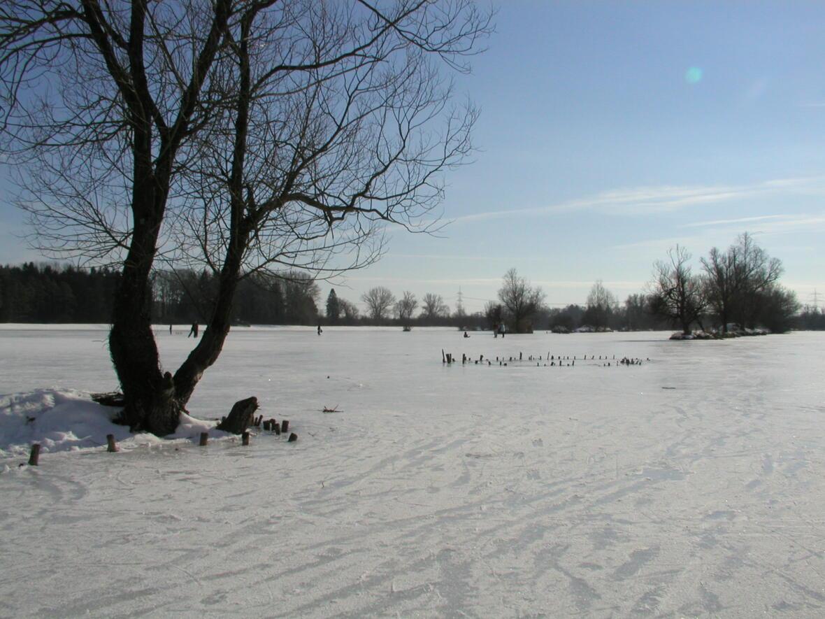Naherholungsgebiet - Weitmannssee