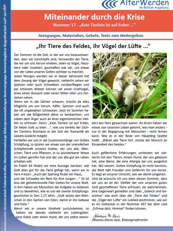 Seite 1 für die Homepage WB 17