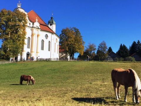 Die Wieskirche bei Steingaden: Weltkulturerbe und Tourismusziel im Bistum Augsburg (Foto: Karl-Georg Michel)