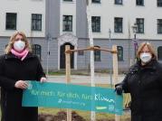 Ulrike Stowasser und Monika Knauer vor dem neuen Amberbaum am Augsburger Hofgarten (Foto: KDFB)