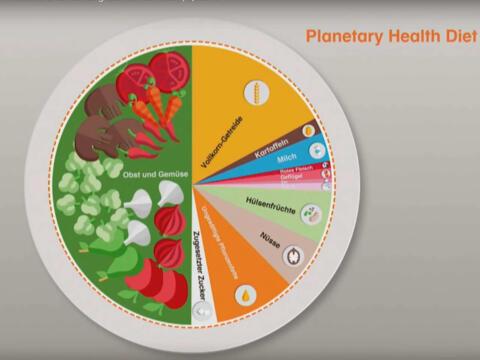 So sieht sie aus, die Planetary Health Diet (Grafik: YouTube)