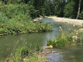 Es gibt viele Wege zum lebenspendenden Wasser. (Symbolfoto: Karl-Georg Michel)
