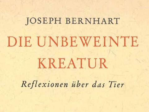 """1961 erschienen und noch immer aktuell: """"Die unbeweinte Kreatur"""" (Grafik: Buchumschlag)"""