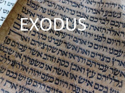 Exodus Teil 1