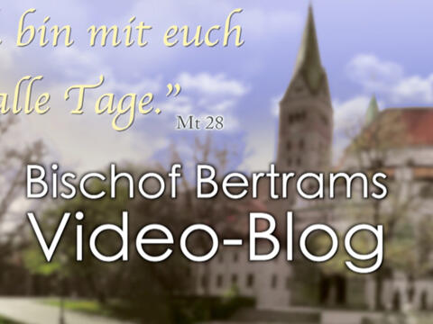 Boxbild Video-Blog