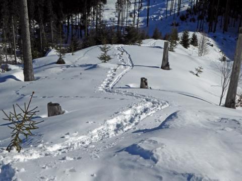 Schneeschuhexerzitien