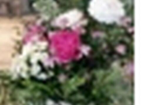 Spende für Blumenschmuck