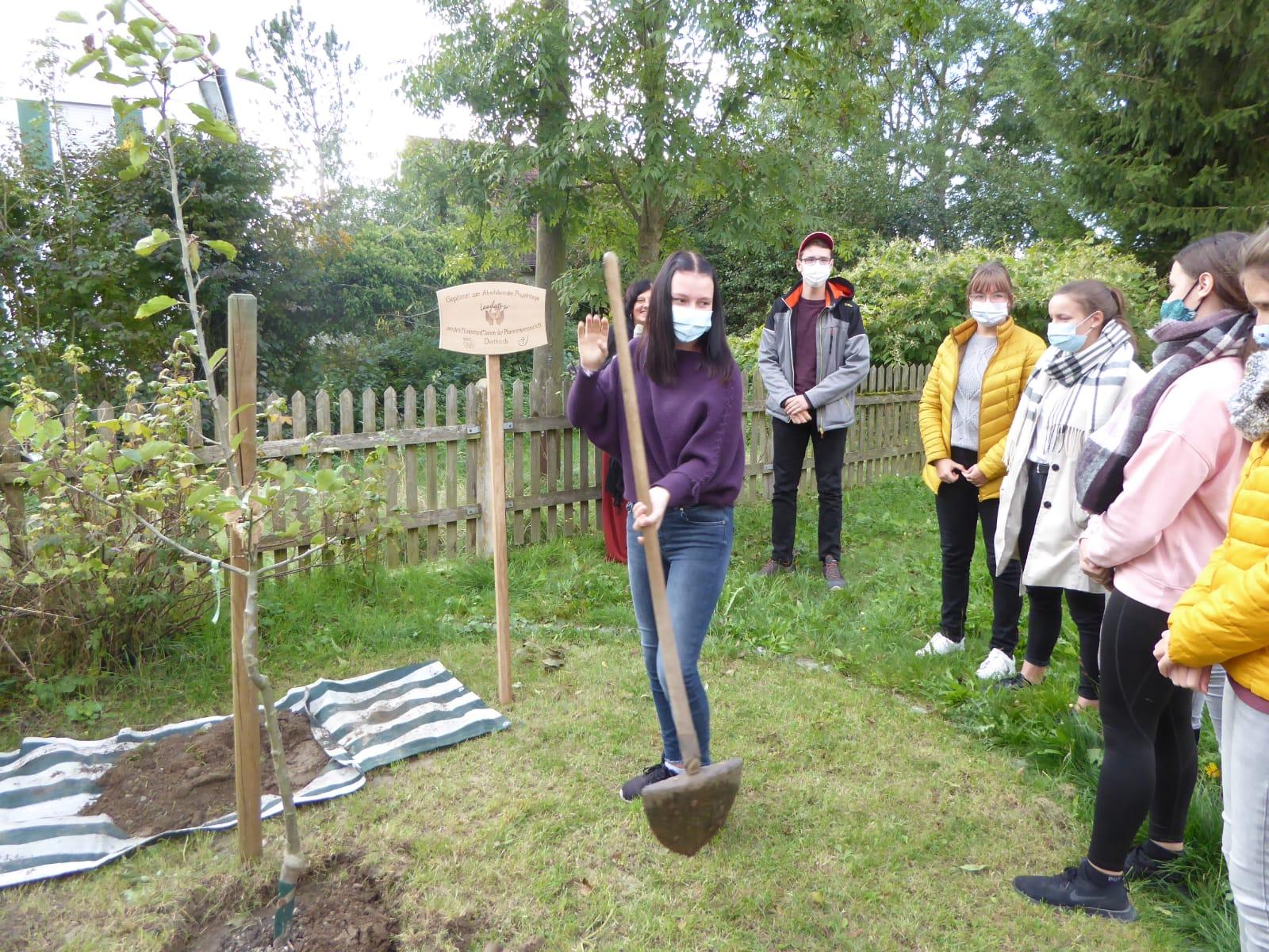 Zum Abschluss der Projekttage pflanzen die Ministranten einen Apfelbaum. Aber damit ist es noch lange nicht vorbei. (Foto: Claudia Possi)