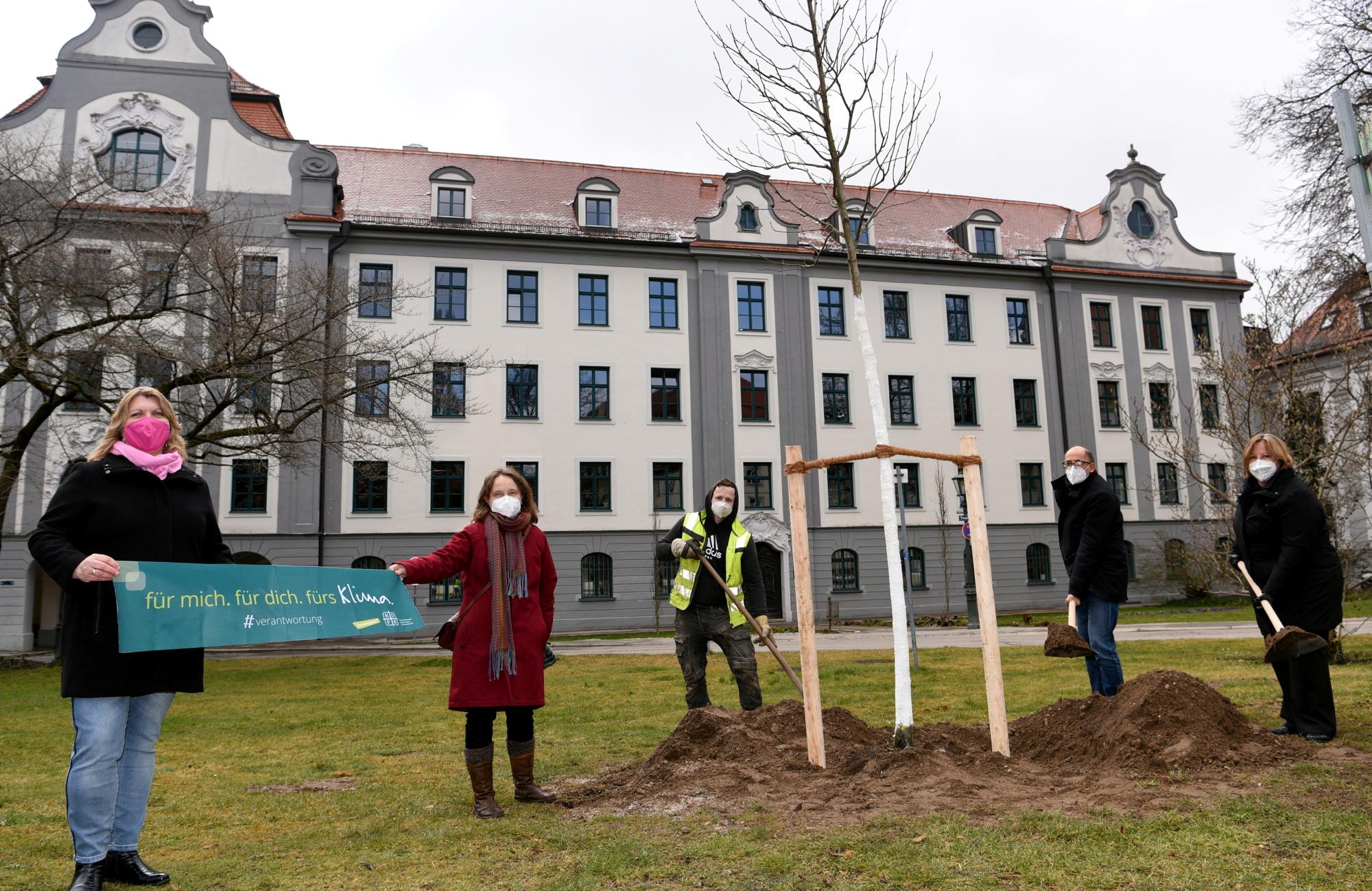 Umweltreferent Reiner Erben (2.v.r.), Amtsleiterin Anette Vedder (2.v. l.) sowie die KDFB Diözesanvorsitzenden Monika Knauer (rechts) und Ulrike Stowasser (links) freuen sich mit dem Mitarbeiter des Amtes für Grünordnung (Mitte) über den Amberbaum. (Foto: KDFB)