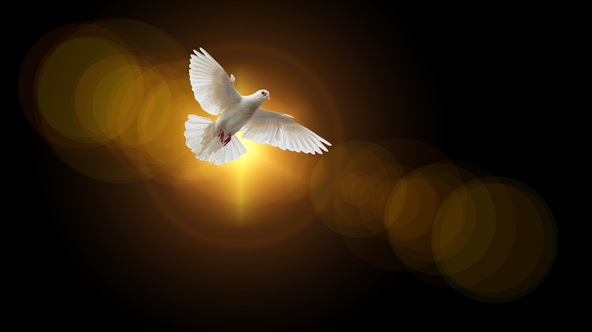 Komm Heiliger Geist - Online Exerzitien