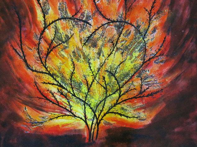 Der brennende Dornbusch. (Copyright Heidi Esch)