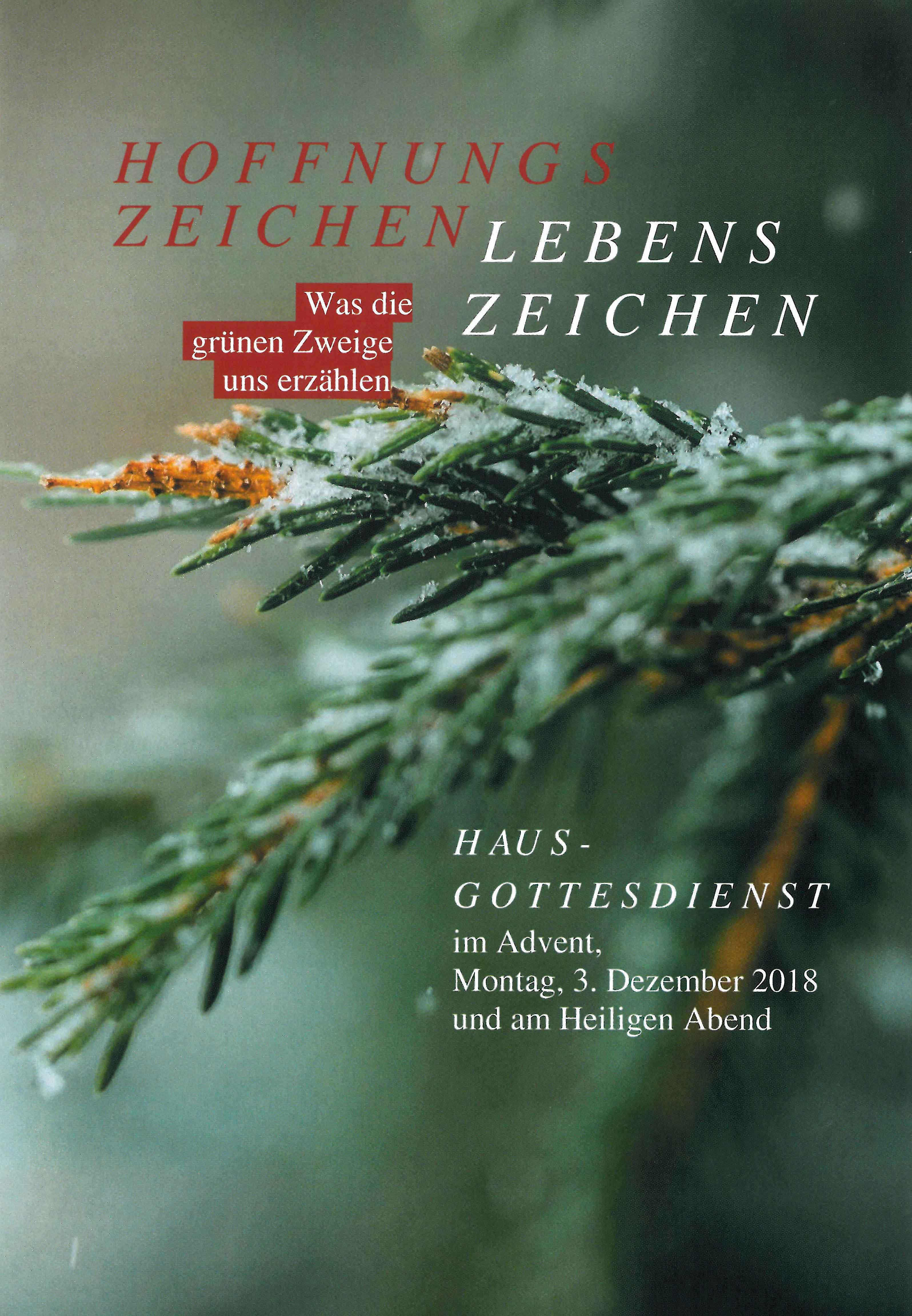 Hausgottesdienste im Advent und an Weihnachten: Broschüre mit Texten, Liedvorschlägen und Gebeten
