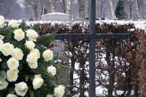Briefe Von Christoph Probst : Weiße rosen zum jahrestag der hinrichtung nachrichten
