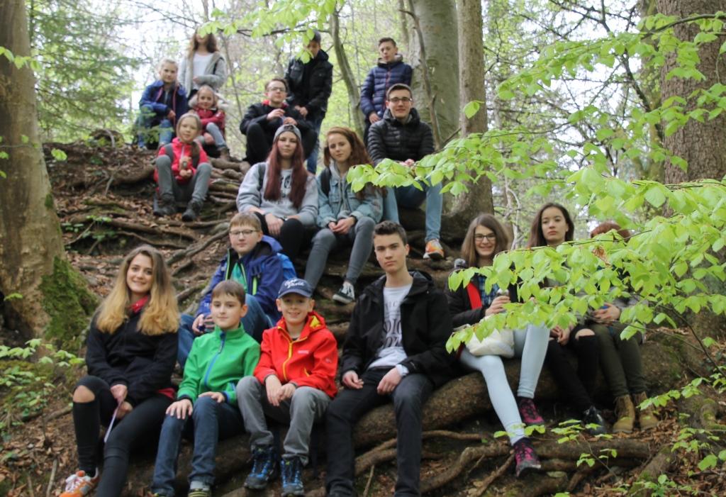 Pause im Wald
