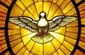 Ansprache an Pfingstmontag 2017 im Hohen Dom zu Augsburg